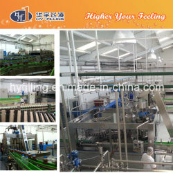 Pet Bottled Natural Juice Filling Equipment