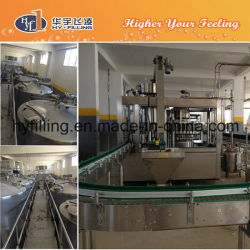 PET Bottle Carbonated Soft Drink 3-in-1 Filling Machine (DCGN Series)